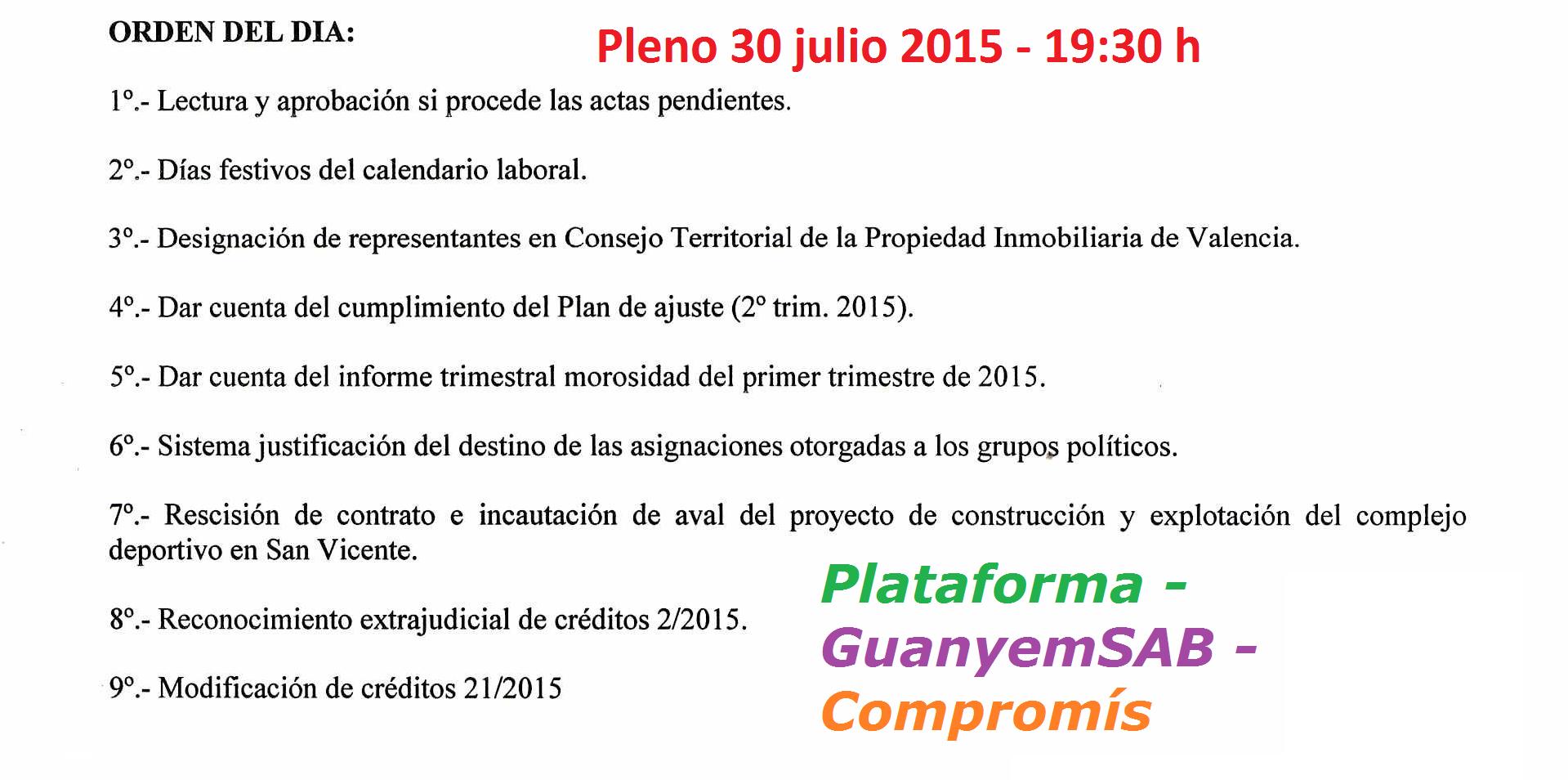 OD pleno 30 julio 2015